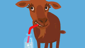 Goats and Soda
