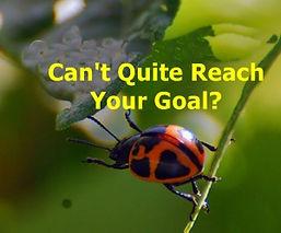 reach goal 3.jpg