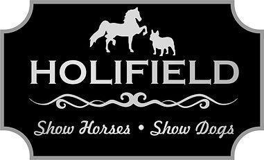 Custom Logo Design, Equestrian Logo