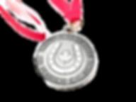 Medallions, Horse Show Prizes, Custom Awards