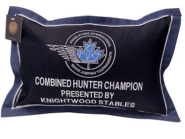 Horse Show Prize Pillows