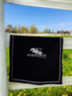 Coolerette, Cusom Wool Coolerette, Horse Show Prizes, Stable Accessories