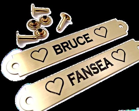 Brass Halter Plate