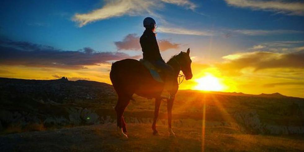 Sunset Horse Ride!!!x