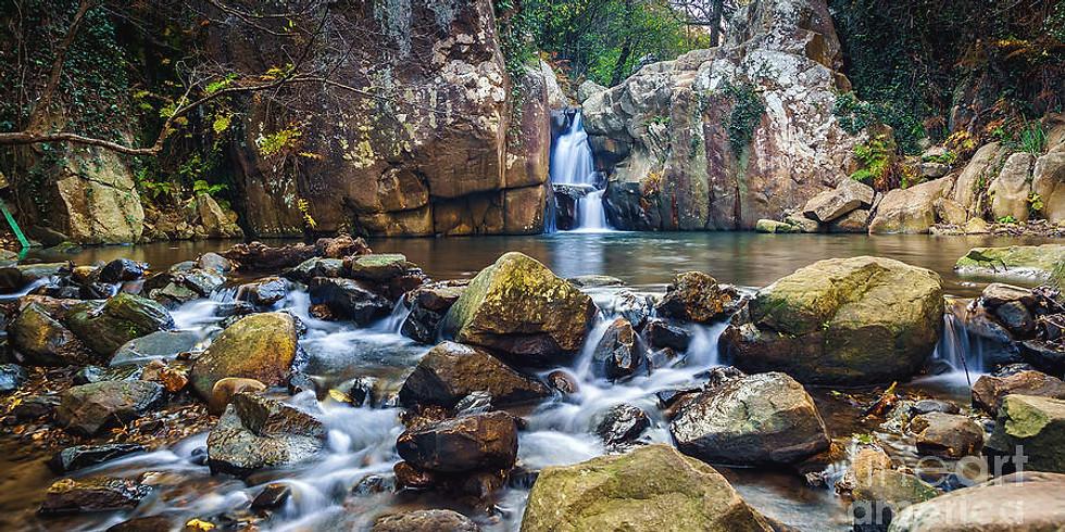 Hump Day Hike - Algeciras Honey River!!!x