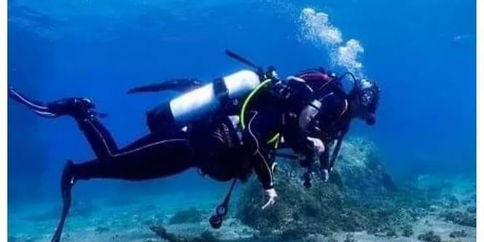 Try Dive - Gibraltar!!!x