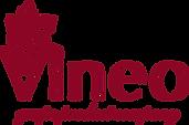 логотип+VINEO_png.png