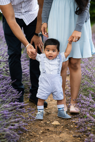 Your family in the lavender-3.jpg