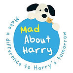 mad about harry.jpg