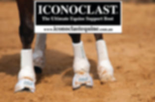 ICONOCLAST ON WHITE FOR Jay McLaughlin P