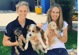 Woodrock Animal Rescue, takes over Ark Animal Centre to continue their legacy.