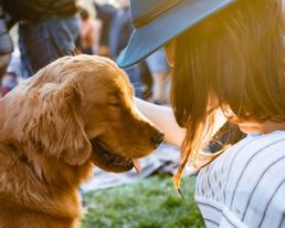 SA's Oldest Pro-Life Animal Shelter, Woodrock Animal Rescue to Host Eve Fundraising Walk.
