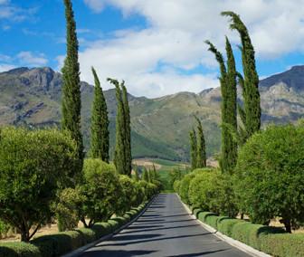 Grande Provence Heritage Wine Estate – A haven of tranquillity in Franschhoek