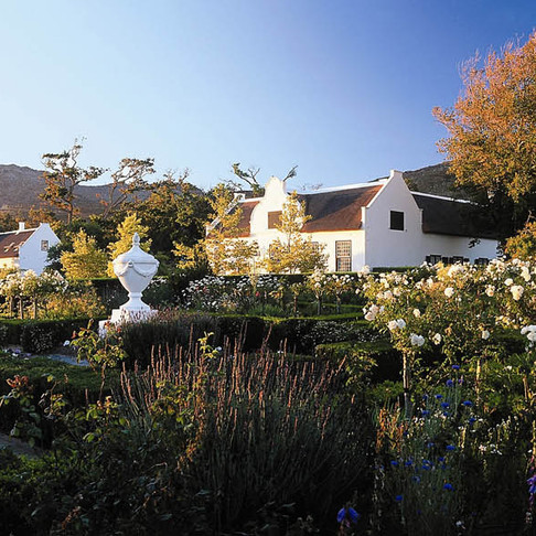 Tales from the garden at Steenberg Hotel & Spa.