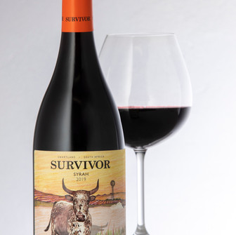 Survivor launches first full-blooded Swartland Syrah.