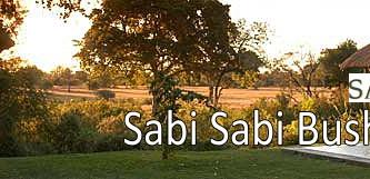 Luxury Bush Stay - SABI SABI Bush Lodge.