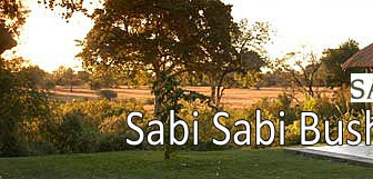 Luxury Bush Stay - SABI SABI Bush Lodge.