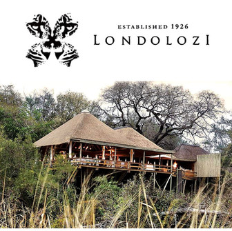 Londolozi... the African Muse of private Safari, capturing the magic of Mother Nature.