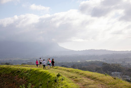 Steenberg toasts spring with their annual trail run.