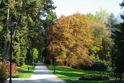 Parco Asburgico