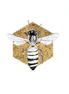 Honey-Bee_edited.jpg