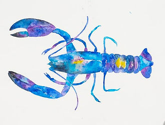 Watercolour painting of a lobster