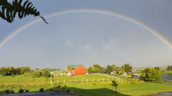 Rainbow farm - Copy
