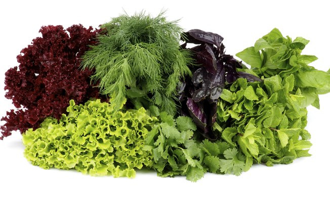 Folhas verdes escuras ajudam a combater a celulite