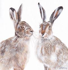 hares  copy.jpg