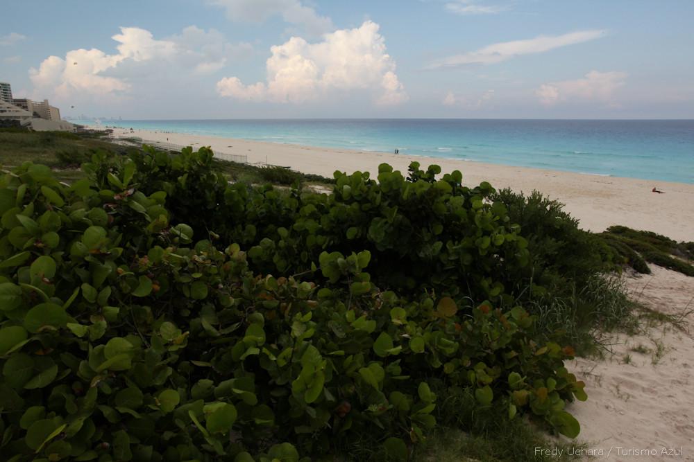Cancun (12).jpg