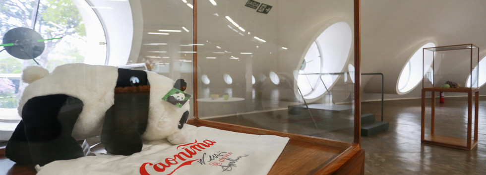Raiz Weiwei - Foto Fred Uehara-SP24h (50