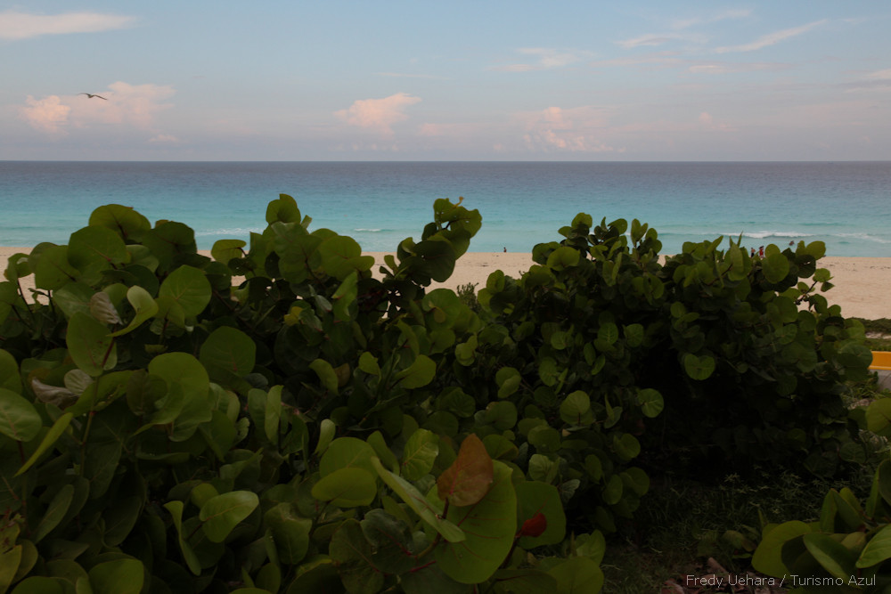 Cancun (13).jpg