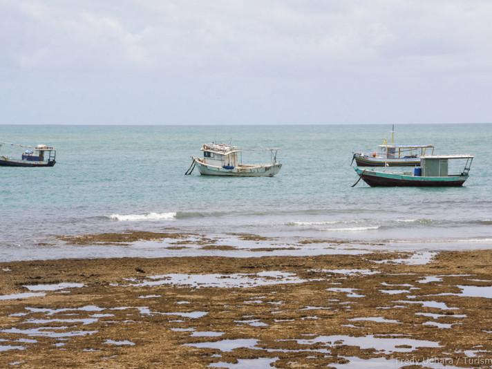 Bahia (8).jpg
