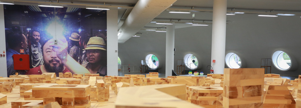 Raiz Weiwei - Foto Fred Uehara-SP24h (43