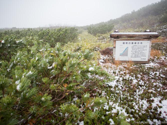 Hokkaido_-_Japão_-_Foto_Fredy_Uehara_(3