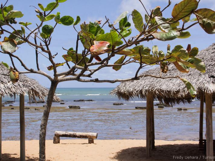 Bahia (20).jpg