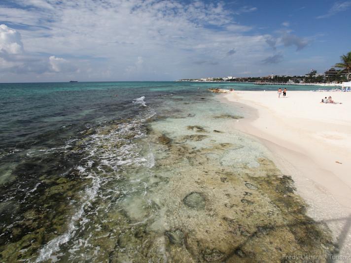 Playa Del Carmen (26).jpg