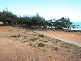 Ponta Negra (22).jpg