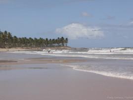Bahia (37).jpg