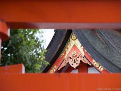 Kyoto_-_Japão_-_Foto_Fredy_Uehara_(27).