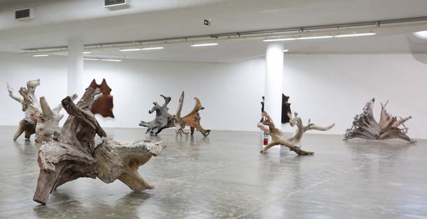 Raiz Weiwei - Foto Fred Uehara-SP24h (66