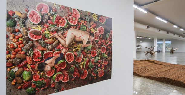 Raiz Weiwei - Foto Fred Uehara-SP24h (86