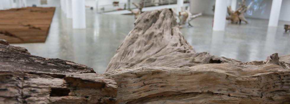 Raiz Weiwei - Foto Fred Uehara-SP24h (71