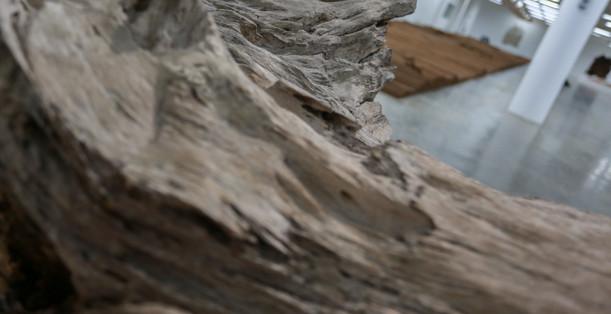 Raiz Weiwei - Foto Fred Uehara-SP24h (69