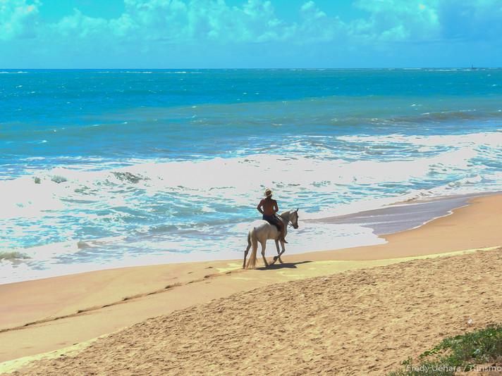 Alagoas (3).jpg