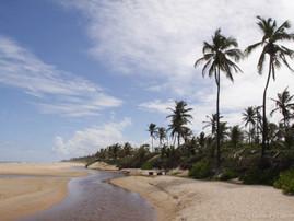 Bahia (36).jpg