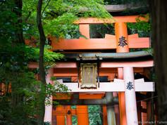 Kyoto_-_Japão_-_Foto_Fredy_Uehara_(21).