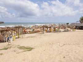Bahia (34).jpg