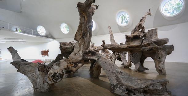 Raiz Weiwei - Foto Fred Uehara-SP24h (76