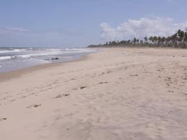Bahia (40).jpg
